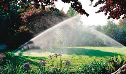 irrigation_RB