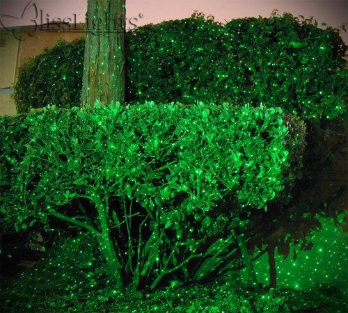 Color Splash Green Christmas Lights